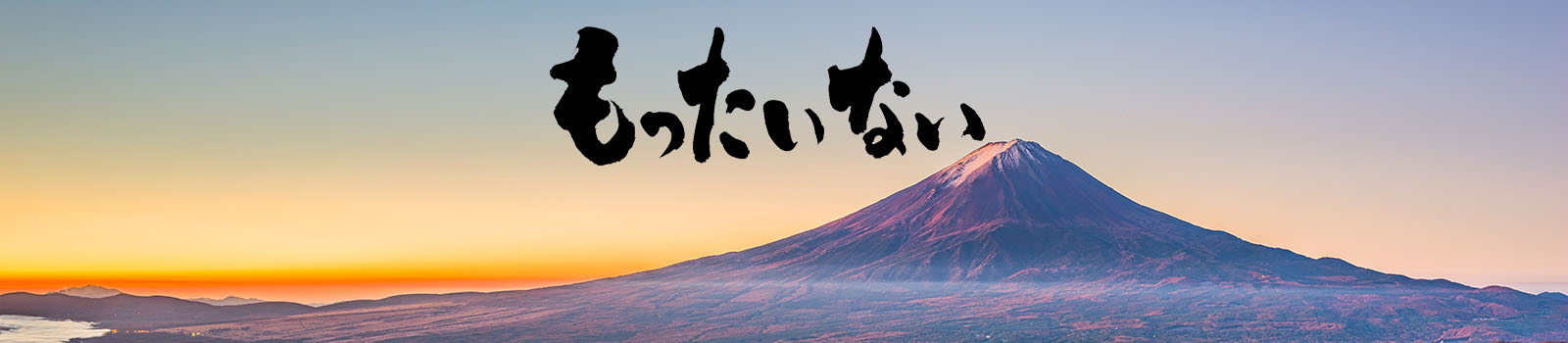Mottainai (勿体ない) !!!