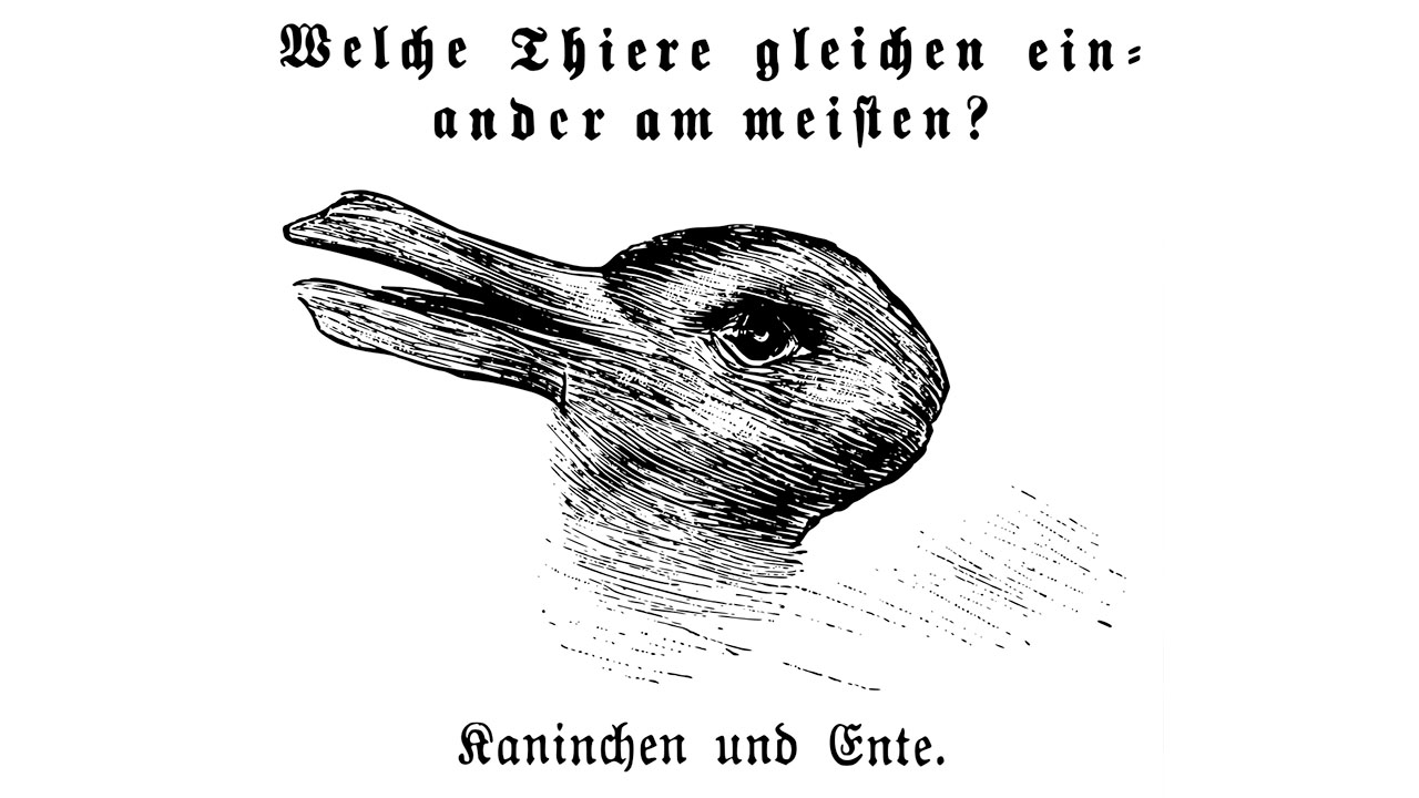 Is It a Duck or a Rabbit